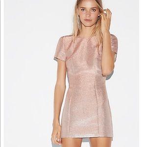 NWT Express Metallic Short Sleeve Mini Dress-4